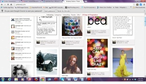 Screen-Shot-Of-Pinterest-Dashboard